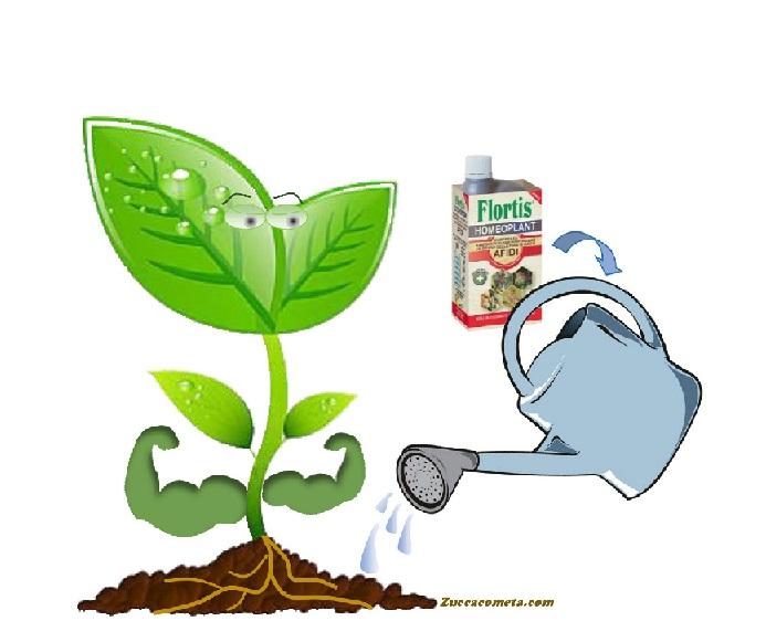 rinfrozante difese piante Zuccacometa.com