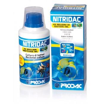Nitridac - batteri purificanti per acquari - Prodac