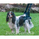 BT UP- supporto per zampe posteriori - cane - Balto