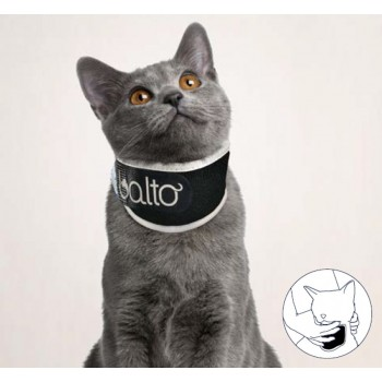 BT NECK ECO CAT- collare antileccamento - gatto - Balto