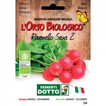 Ravanello Saxa 2 - Orto Biologico - Sementi Dotto