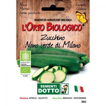Zucchino nano verde di Milano - Orto Biologico - Sementi Dotto
