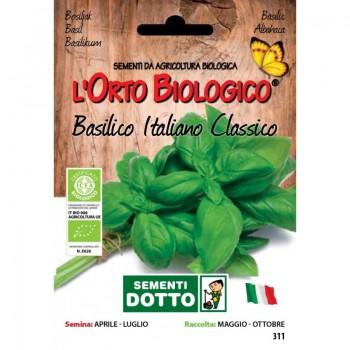 Basilico italiano classico - Orto Biologico - Sementi Dotto