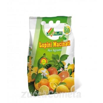 Lupini macinati - per limoni, aranci e piante acidofile - Al.fe
